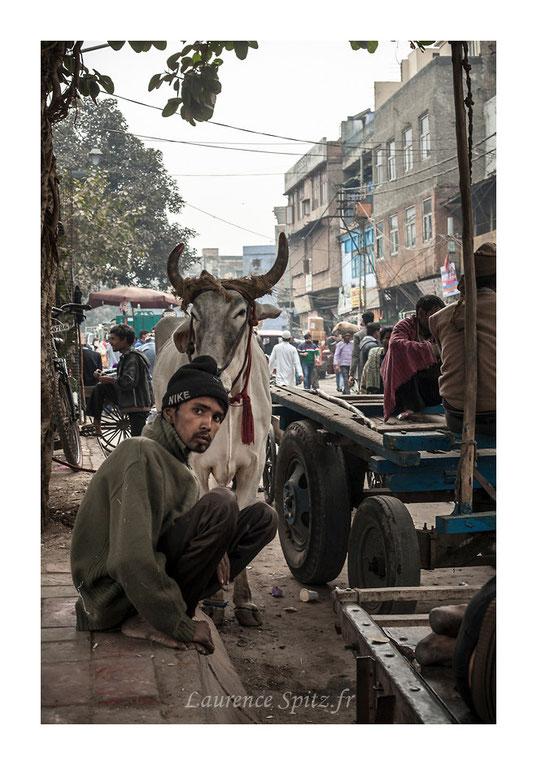• L'attente • Delhi