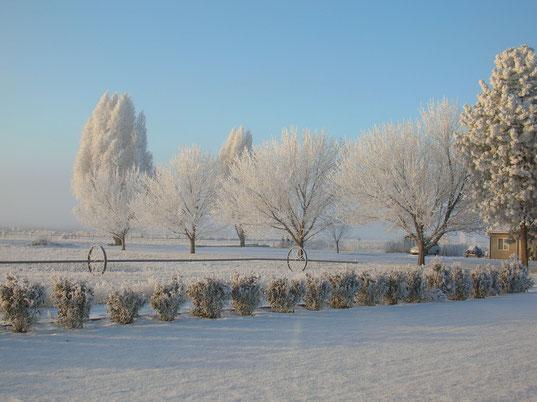 Winterwonderland in Washington