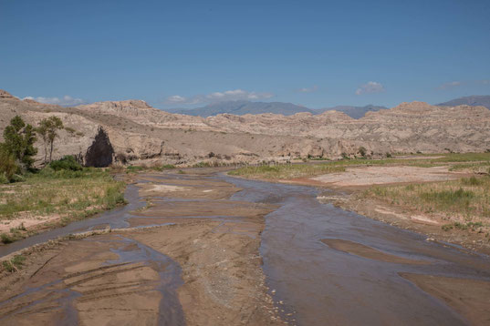 Rio Calchaqui