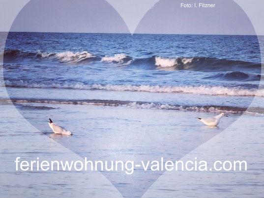 Strand von Gandia, Valencia, 01/2020, Foto: I. Fitzner