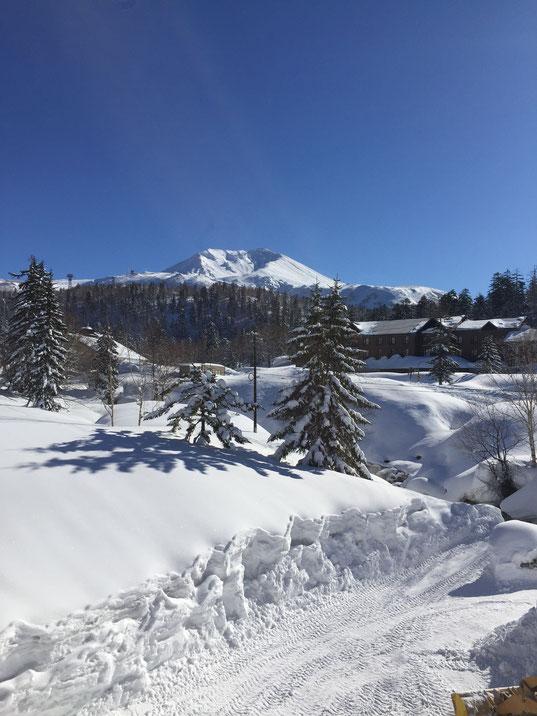 食堂から大雪山の雄大な景観が望めます。