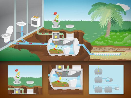 Septic Tank Illustration für Borda Limited