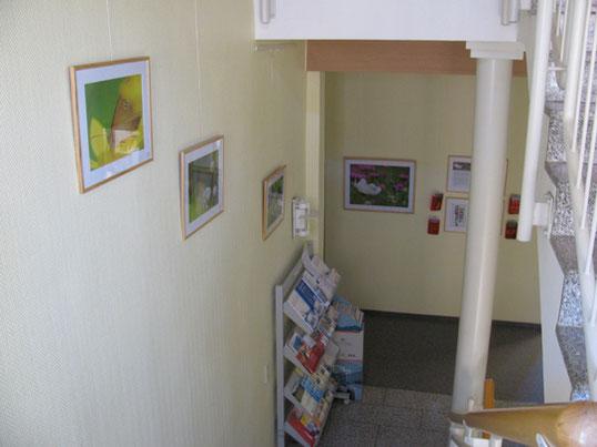 Valerie Forster, Ausstellung, Bunte Wiesenfreuden, Rathaus Neukirch