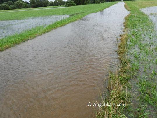 Überschwemmung   © Mag. Angelika Ficenc