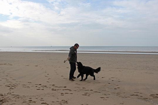 Mit Stöckchen spielen klappt irgendwie nur am Strand ...