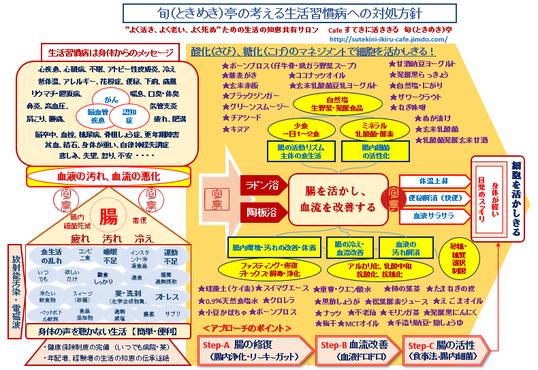 旬(ときめき)亭の考える ガンに代表される生活習慣病への対処法 ・044-955-3061  tokimeki@terra.dti.ne.jp
