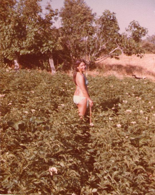 Regando patatas 1. Foto de Pedro. P. Privada.