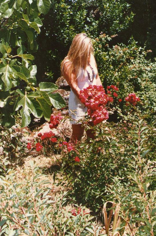 Y........mis rosas. F. Pedro.