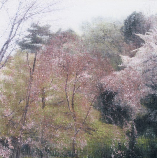 Dyptich Image/Signal Image(cherry blossom) 145x145cm, oil on canvas, 2005