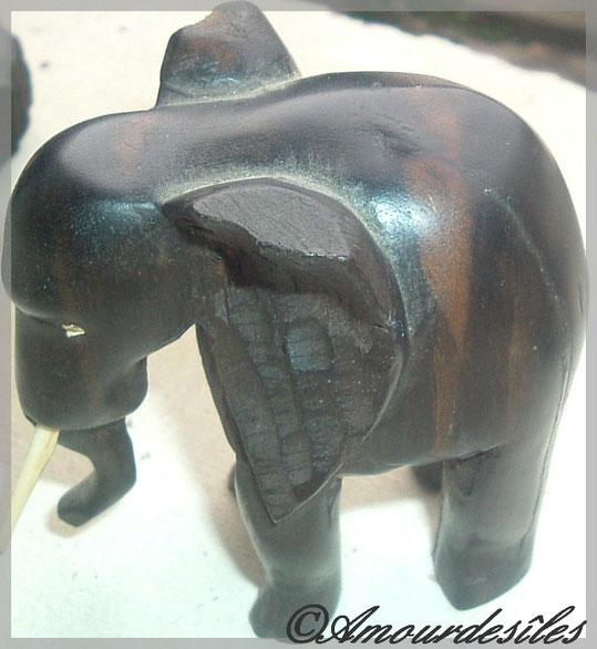 L'un des éléphanteaux...