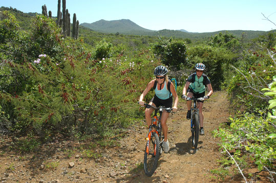 Biken, Curacao, Karibik, Karibische Inseln