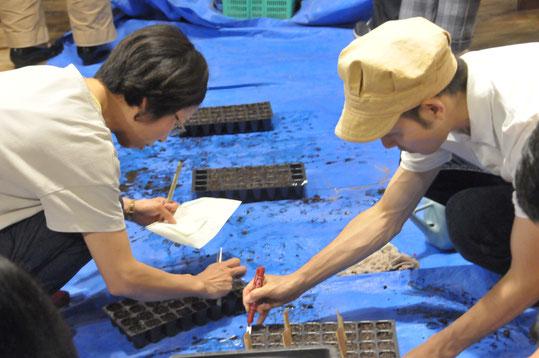 野菜作り教室 カフェスロー 自然栽培 農業体験 固定種