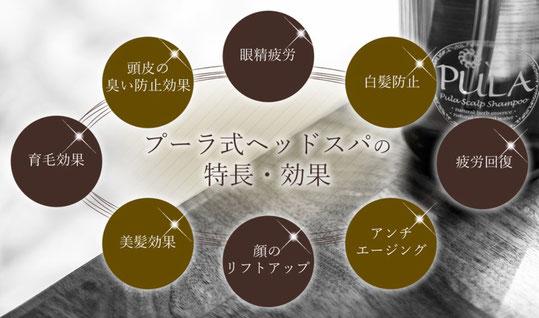 プーラ式ヘッドスパの特徴 【その1】ヘッドスパの効果が突出!