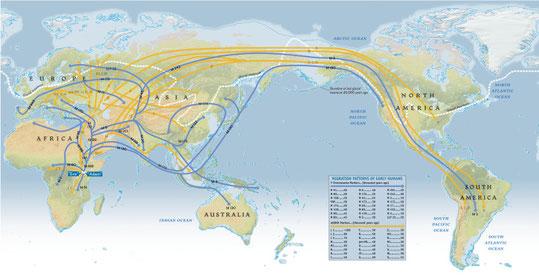 Carte des migrations humaines depuis 60 000 ans (Genographic project -DR) -Cliquer pour l'agrandir