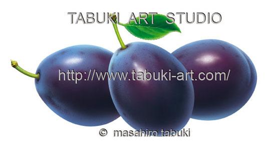 プルーンイラスト くだもの 果物 ストックイラスト 素材イラスト 有料レンタル