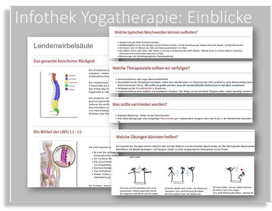 Yogatherapiewissen überall verfügbar