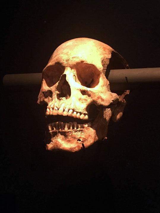 Menschlicher Schädel vom Tzompantli, dem Schädelgestell. Aztekenreich, Tenochtitlán
