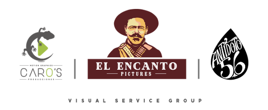 Visual service group logo