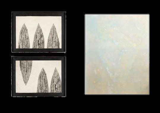 左上:haworthia reinwardtii/2014  左下:haworthia reinwardtii-play/2014  右:仮想物体Ⅰ/2013