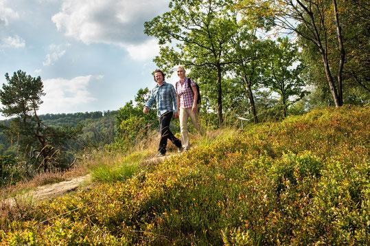 © Teutoburger Wald Tourismus, R. Lang