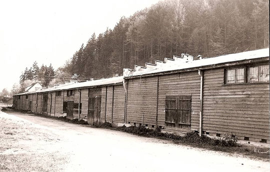 Lager am Haslacher Sportplatz, Aufnahme 1950