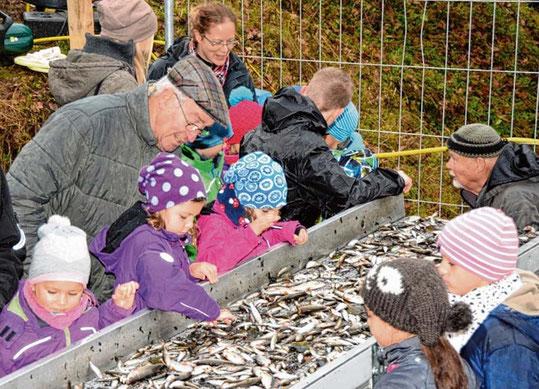 Jung und Alt dicht an dicht – beim Abfischen haben alle immer viel Spaß.