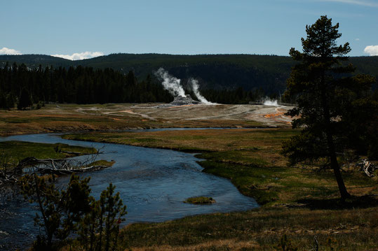 Upper Geyser Basin, Yellowstone, USA, Naturwunder