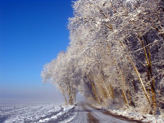 Ein Winterbild das es SO nicht mehr geben wird!