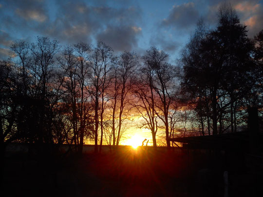 Sonnenaufgang über Karlshof