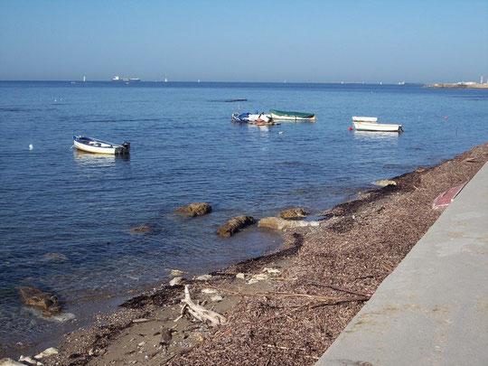 viale di antignano (barche all'ormeggio)