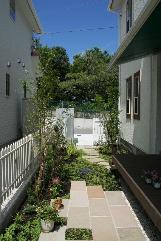 今までは手を入れなかった庭も、緑が入るとどんどんと植物を増やしたくなります。