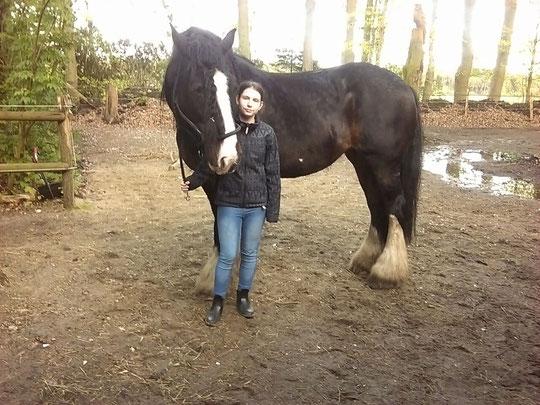 Jasmin mit Shirehorse Leonie