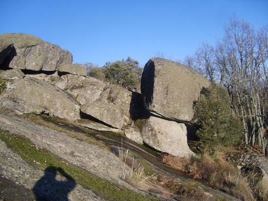 Cueva de la Gallega 1. El encinuche tapa la entrada de la cueva. F. Merche.