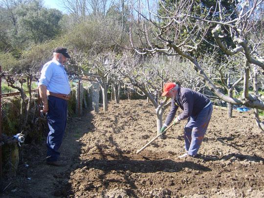 Preparando la tierra para la siembra. Foto de Merche. P. Privada.