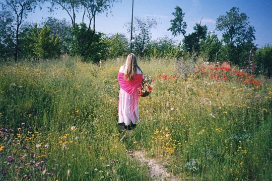 La primavera............la sangre altera y..........las flores colorea. F. Pedro. P. Privada.