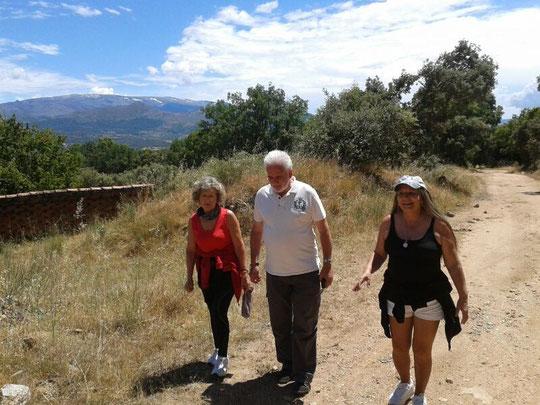 """Camino de """" las Canalejas """" F. Antonio."""