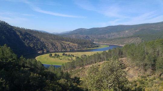 Meandro de su río Alagón.
