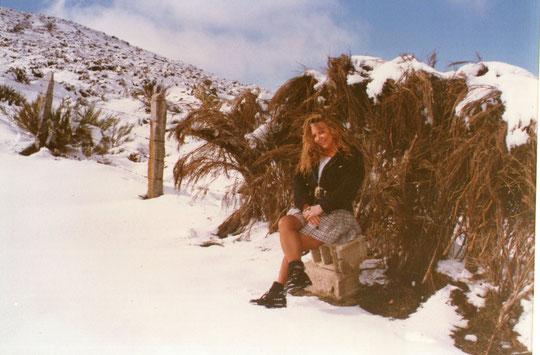 Y ahora llega el invierno y  con él............la nieve, blanca, blanca.