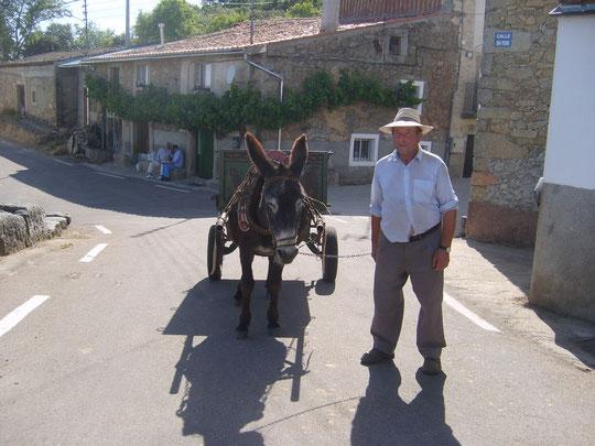 Se acabó el trabajo por hoy Sr. León. Vuelta a casa. Merche 2011. F. P. Privada.