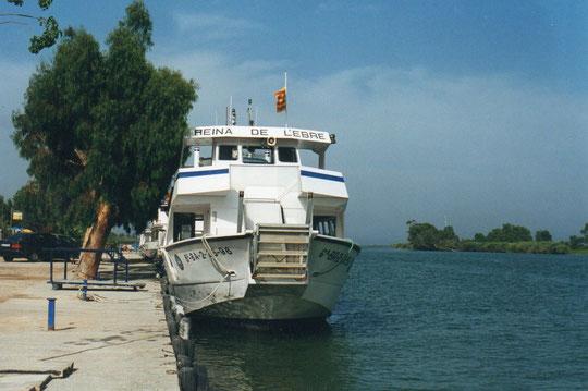 En esta golondrina......iremos desde Deltebre a la desembocadura del Ebro en el mar.