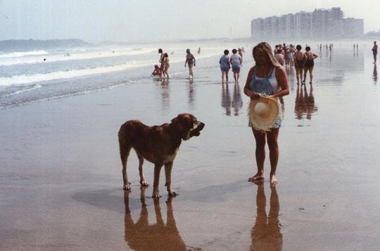 De pronto aparece un perro. Hola perrito ¿ estás perdido ?