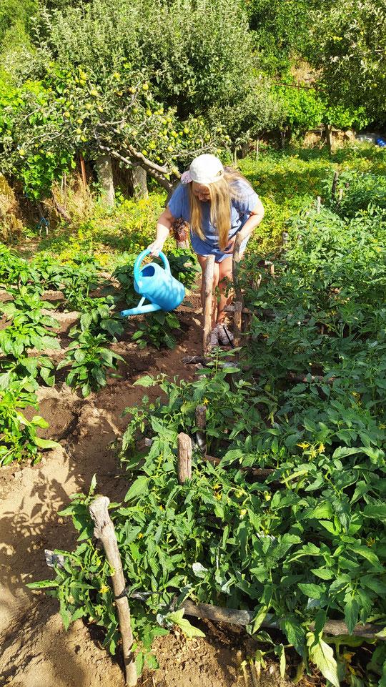 La jardinera. Pedro. P. Privada.