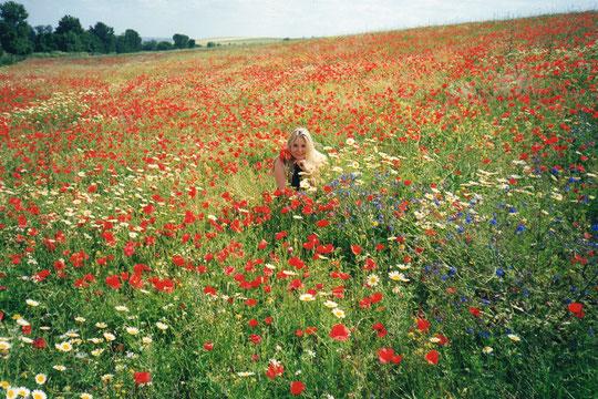 ¡¡ Floridos campos !! F. Pedro.