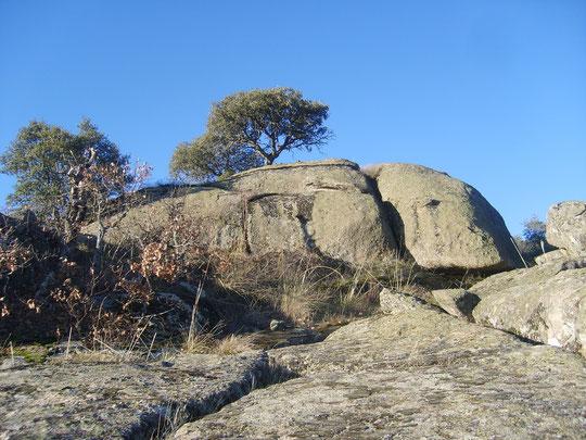 """"""" Peña del Encinuche """" ¿ Un ovni ? mirad sobre el árbol de la izquierda, entre lo seco y lo verde. F. Merche. P. Privada."""