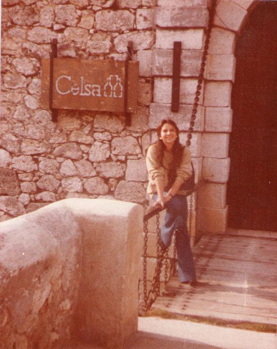 Castillo de Chinchón. F. P. Privada