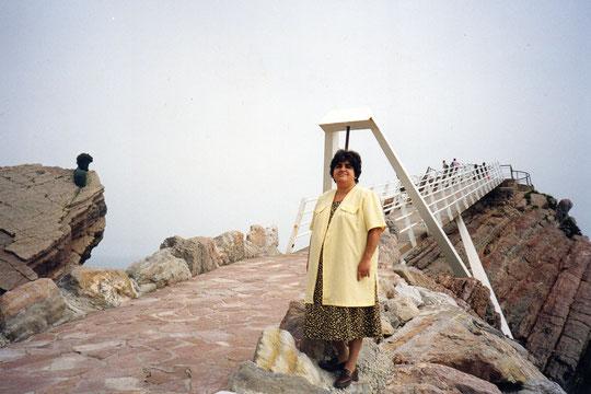 EL puente colgante y el busto de Cousteau ya colocado en la roca. F. Javi.