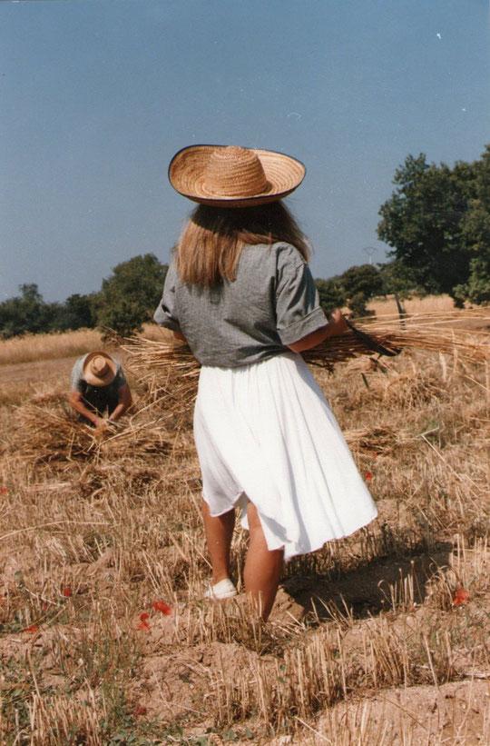 ¡¡ Caliente....... Y cosechero verano !! F. Pedro. P. Privada.
