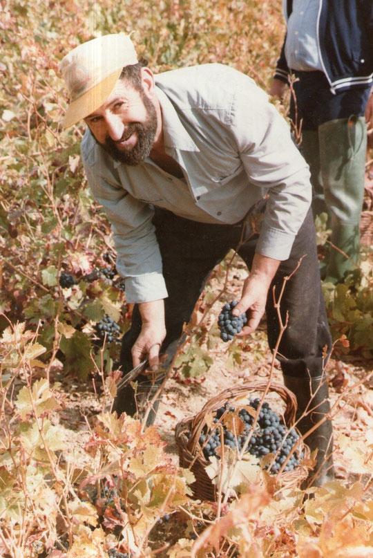 ¡¡ Buenas uvas tío !!