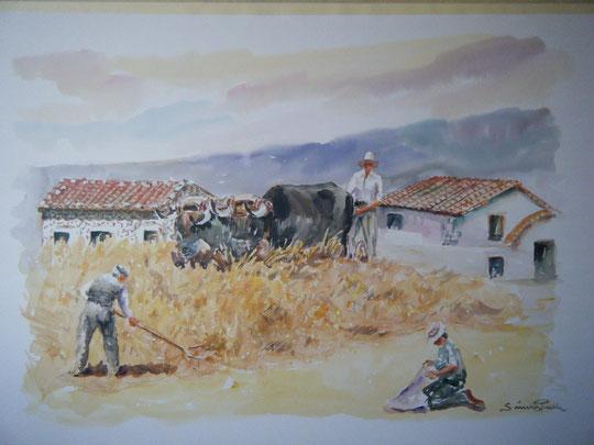 La trilla en Castilla. ( Acuarela )