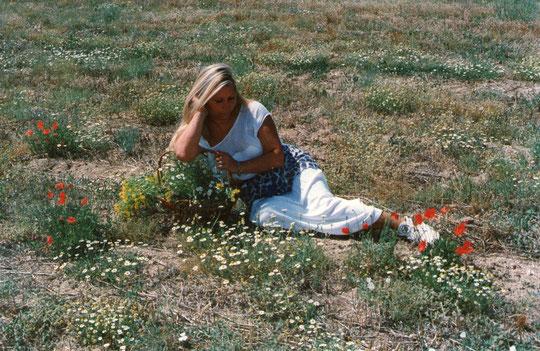 ¿ Flores en verano ? F. de P. Privada.